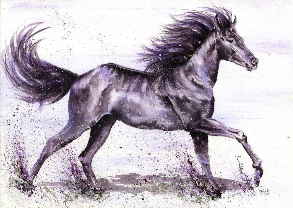 Horse canvas prints