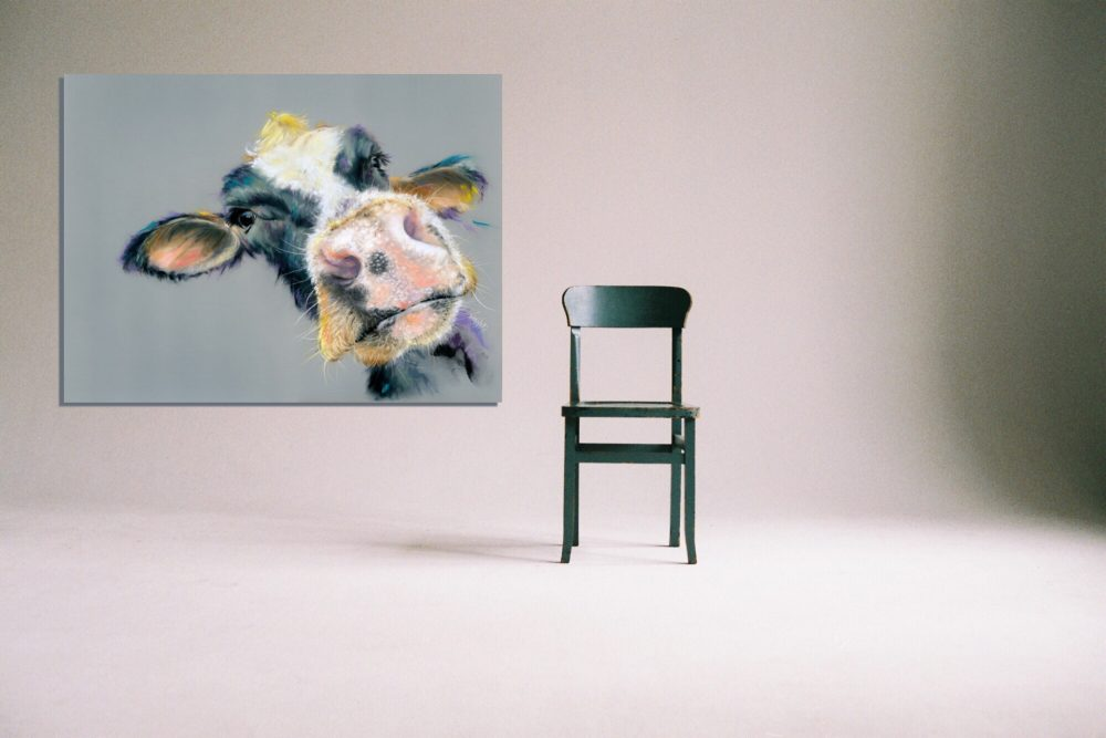 Cow canvas prints with chair
