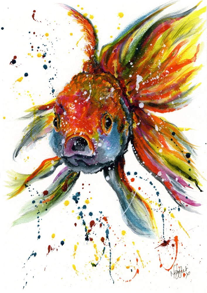 Goldfish Fancy Tropical Fish canvas prints