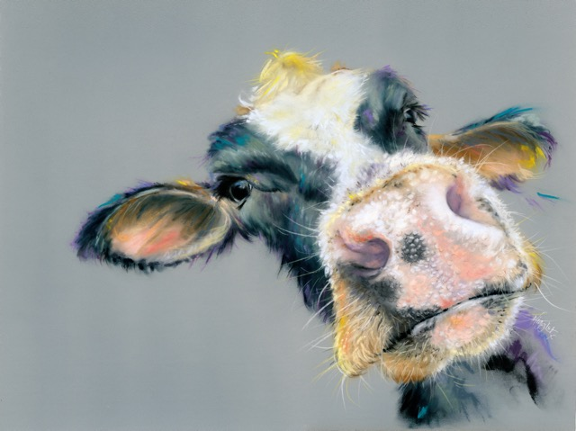 Moo cow canvas prints