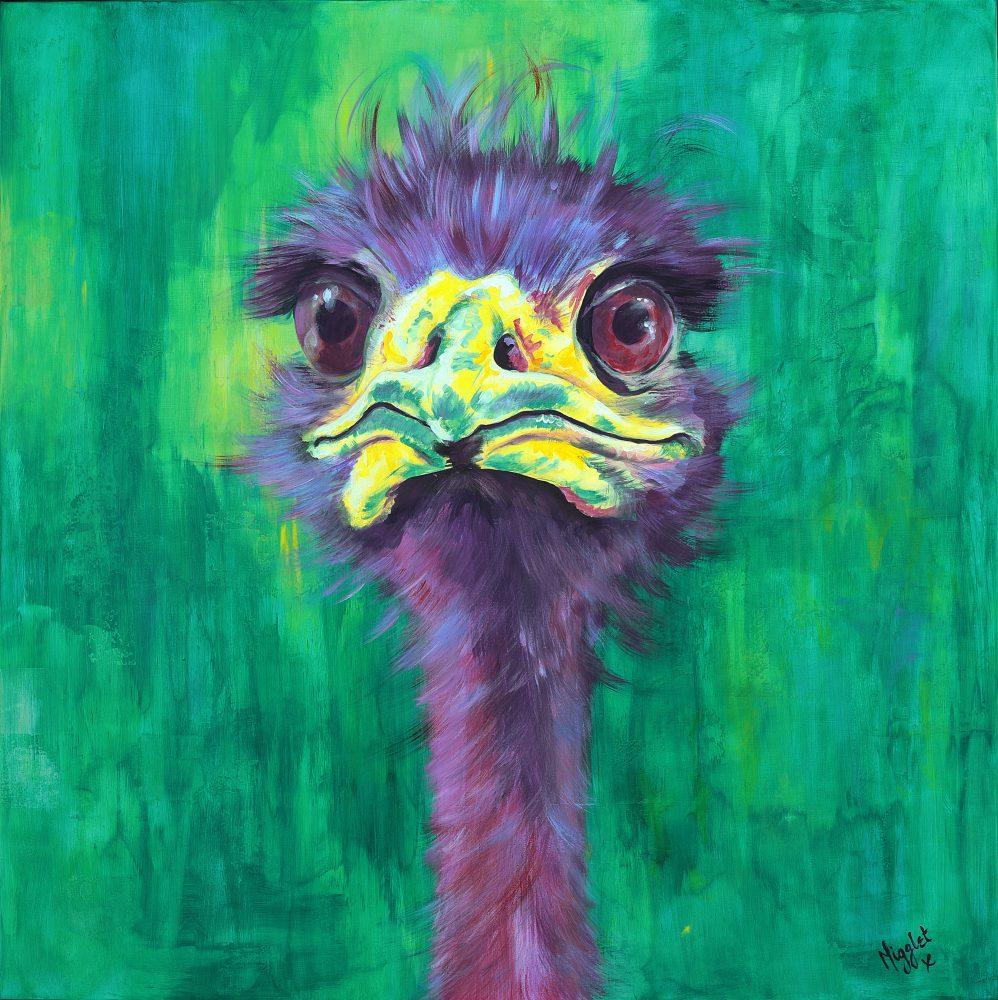 Ostrich Emu Canvas Prints