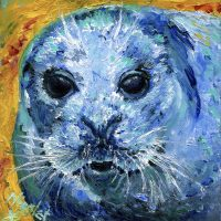 Seal Canvas Prints